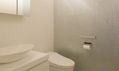 060軽井沢Kさんの家 (トイレ)