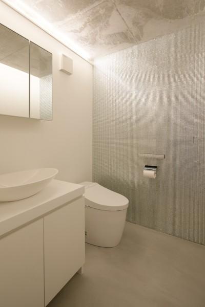 トイレ (060軽井沢Kさんの家)