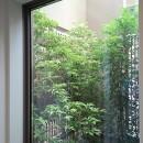 三つの陸屋根を持つコートハウスの写真 玄関ホールから中庭を見る