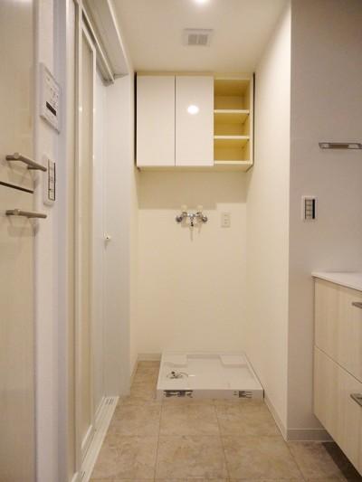 洗面室 (キャットウォークのあるリビング)