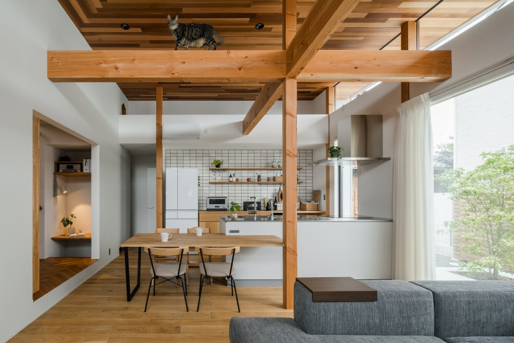 上笠の家(インナーガレージでプライベート空間を作りつつも開放的なリビングのある家) (キャットウォークのあるリビング)