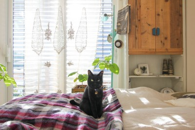 ベッドルーム (カラフルな異素材ハウス)