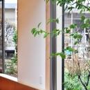 松庵の家 樹々と共生する家の写真 外観