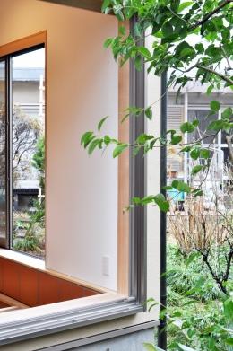 松庵の家 樹々と共生する家 (外観)