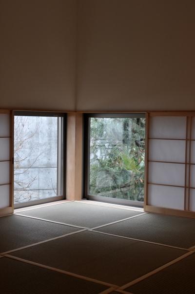 和室 (松庵の家 樹々と共生する家)