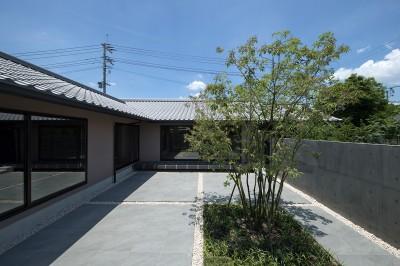 中庭 (山隈の家)
