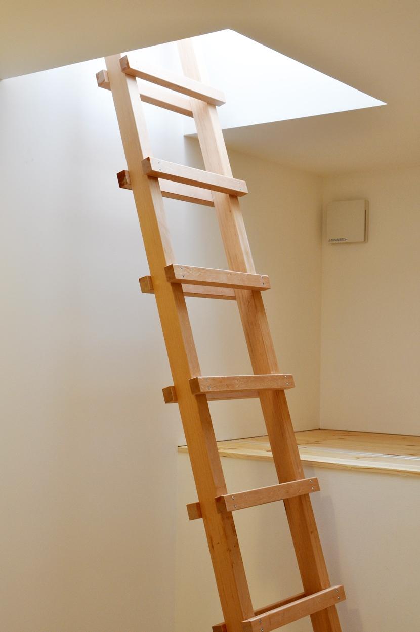 建築家:金子 勉「松庵の家 樹々と共生する家」