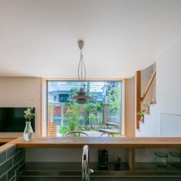 椿山の家 -つながりのある家- (キッチンから庭をみる)