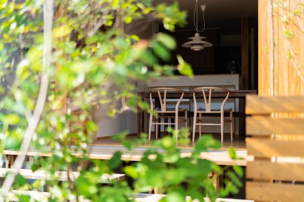 椿山の家 (庭からダイニング)