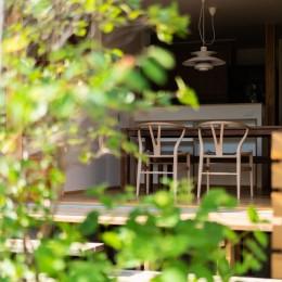 椿山の家 -つながりのある家- (庭からダイニング)