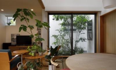 緑に囲まれて暮らす家 (ダイニングからテラスを見る)
