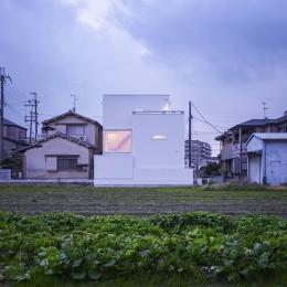 藤井寺の家 (外観1)