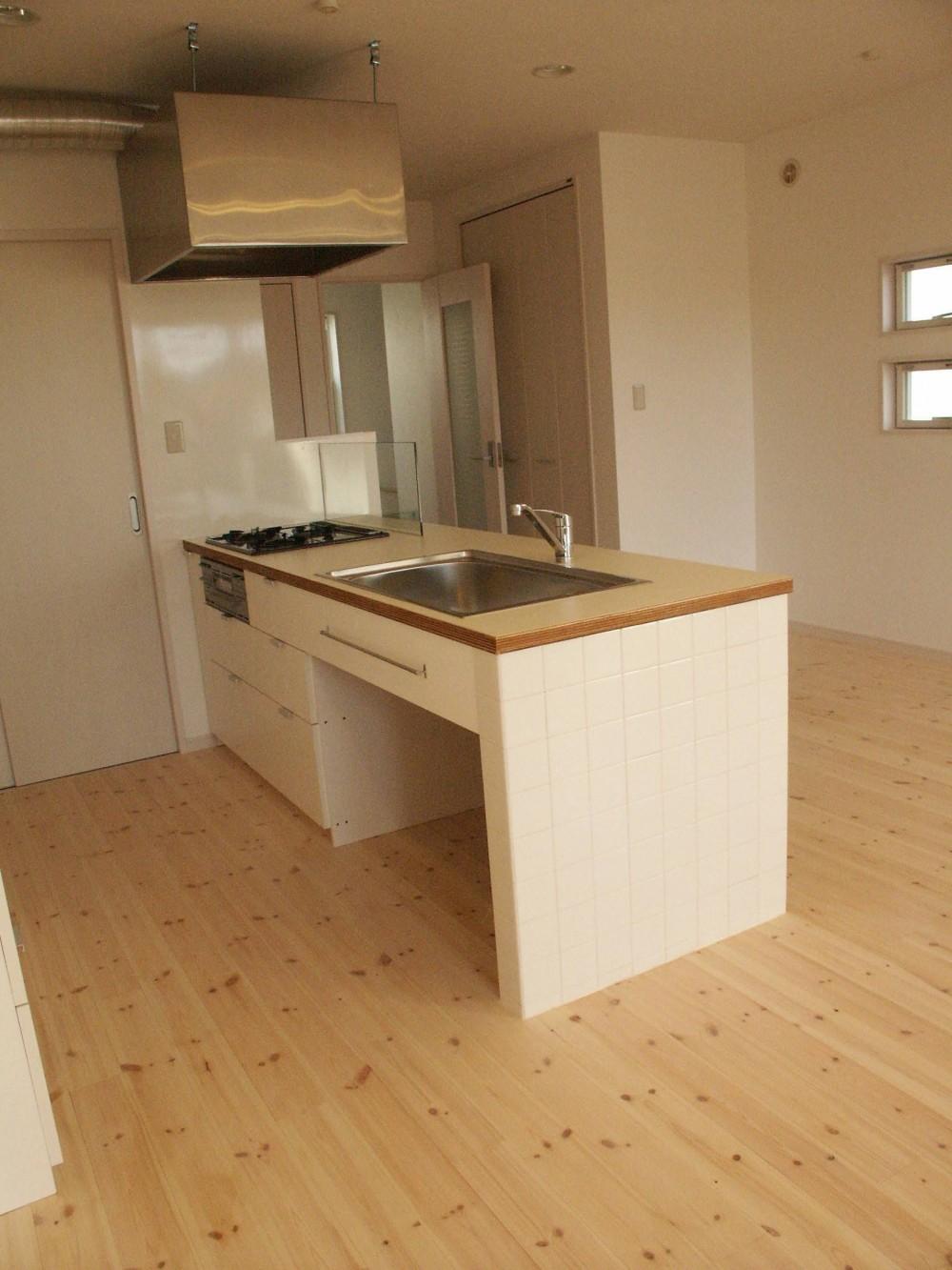 【大阪府】狭小物件を広く見せる光が特徴的な戸建て住宅 (キッチン)
