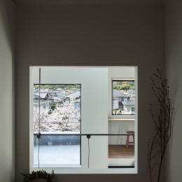 四つ角の家|家の中に4つの小さな家がある住宅【大阪府堺市】 (和室の窓から大きな家、テラス、桜並木を見通す。)