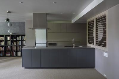 W house (kitchen)