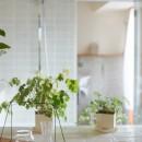 文京区Iさんの家の写真 リビングから浴室を望む
