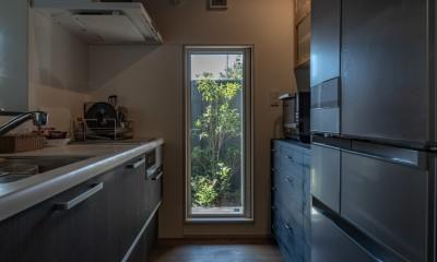 「垂坂山の家」デッキコートとつながる家 (キッチンから木デッキテラスへ)