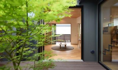 埼玉県北鴻巣の家 (中庭からリビングを望む)