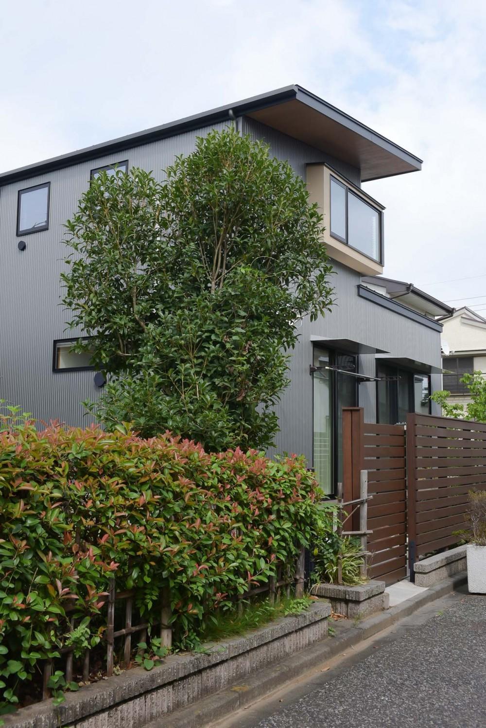 埼玉県北鴻巣の家 (南側に面した通路から外観を見る)