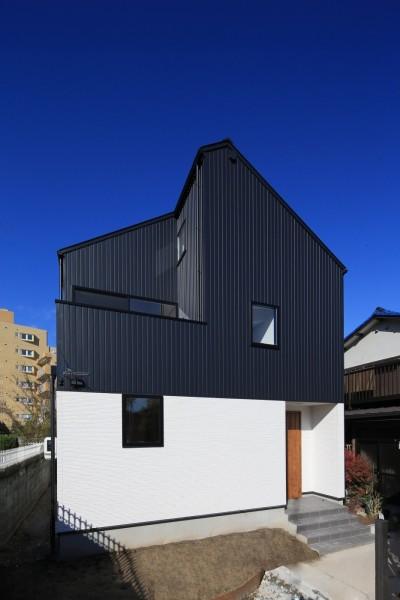 外観 (シンプルな顔にもデザイン性を重視した家。)