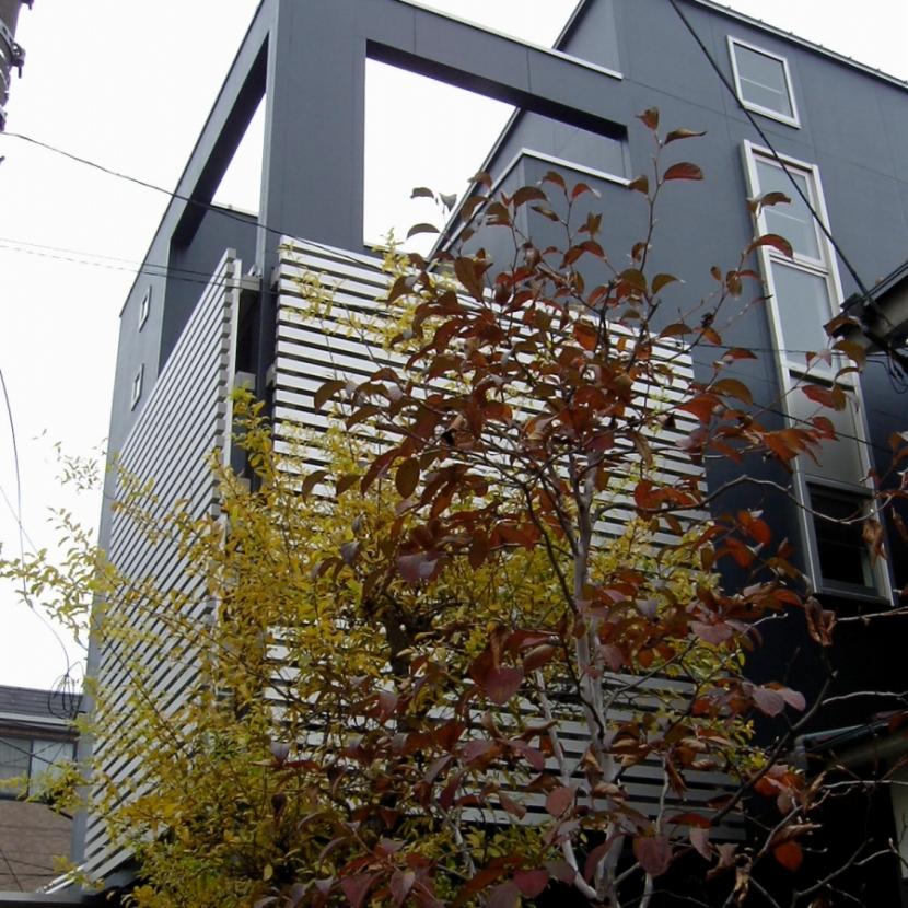 S House (外観)