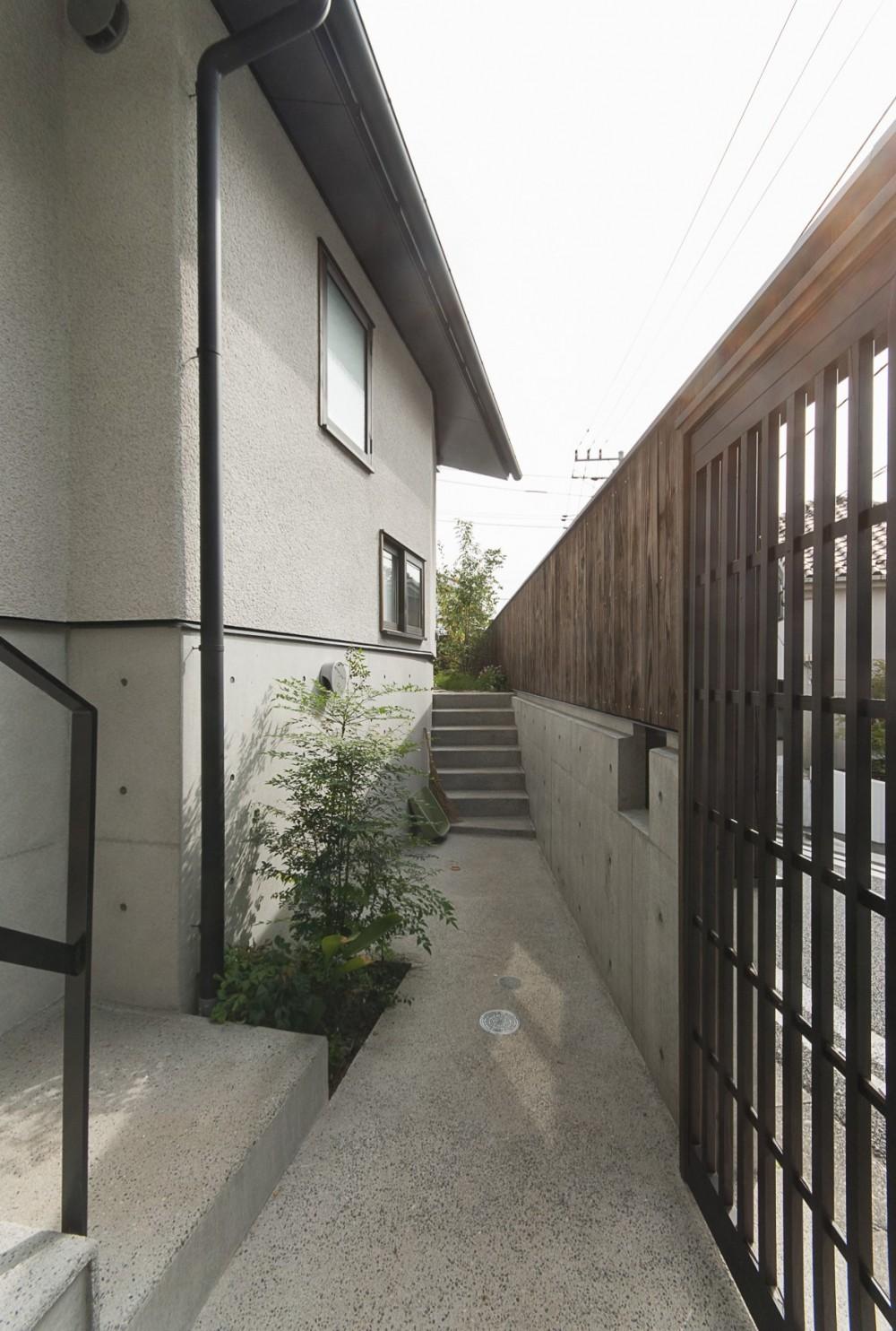 アレルギー反応を持つ子供が住むための和モダン住宅/美しい空気の家 (玄関アプローチ)