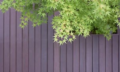 埼玉県北鴻巣の家 (中庭のデッキ)