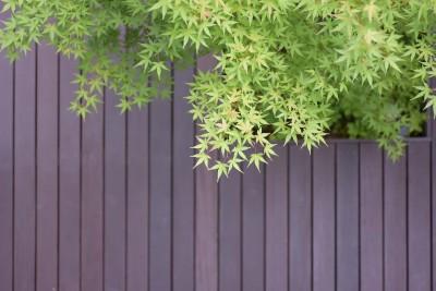 中庭のデッキ (埼玉県北鴻巣の家)