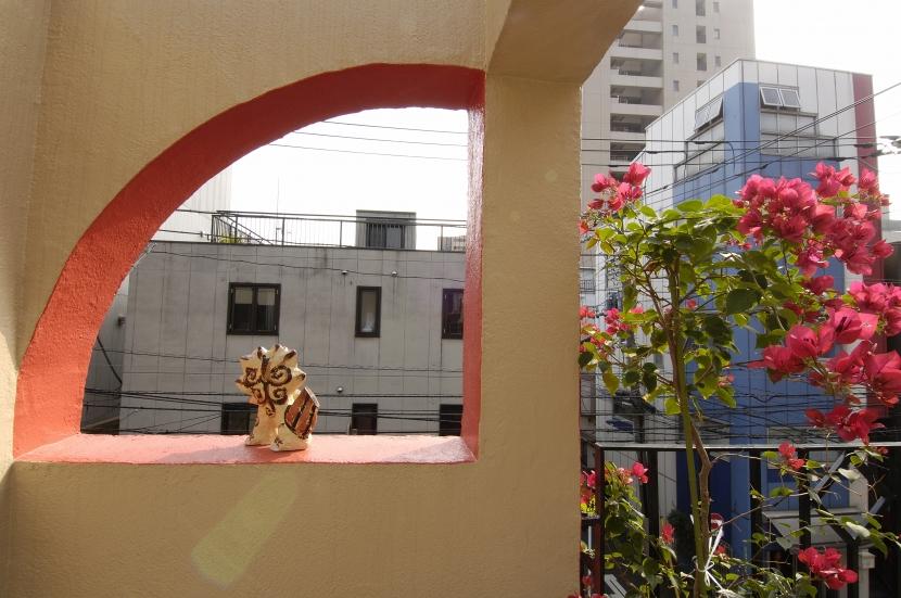 パティオのある家の写真 テラスの風景