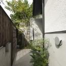 アレルギー反応を持つ子供が住むための和モダン住宅/美しい空気の家の写真 アプローチ