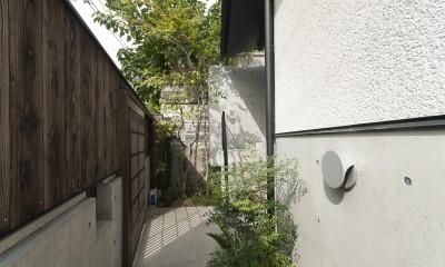 アレルギー反応を持つ子供が住むための和モダン住宅/美しい空気の家 (アプローチ)