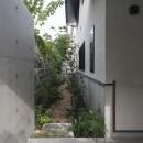 アレルギー反応を持つ子供が住むための和モダン住宅/美しい空気の家の写真 坪庭