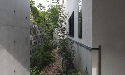 坪庭|アレルギー反応を持つ子供が住むための和モダン住宅/美しい空気の家