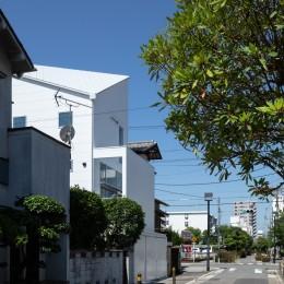 長居東の住宅 / House in Nagai-higashi (外観(北東側より見る))