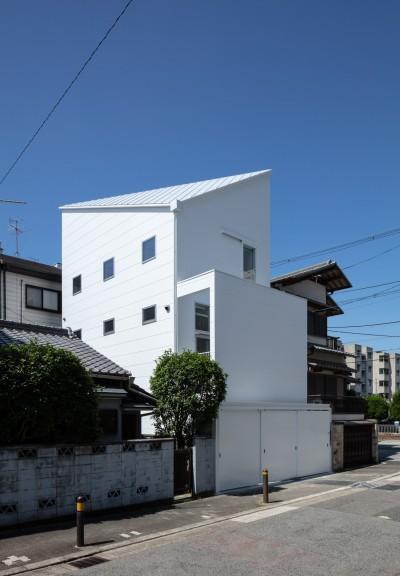 外観(北東側より見る) (長居東の住宅 / House in Nagai-higashi)