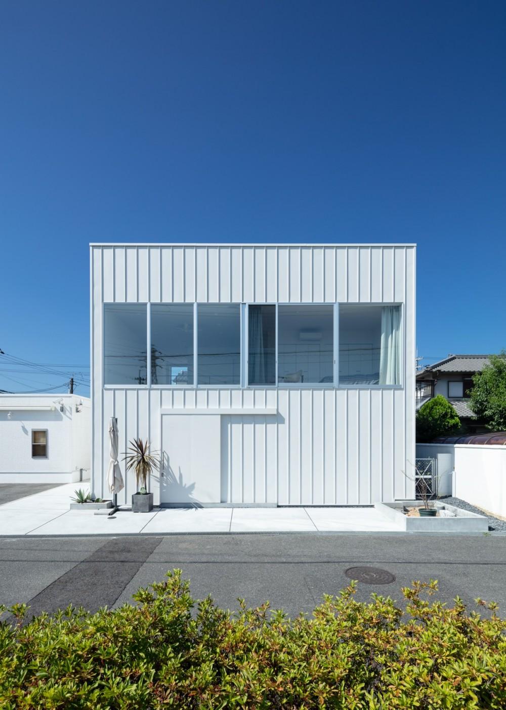 結崎の住宅 / House in Yuzaki (外観(北東側公園より見る))