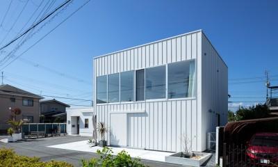 結崎の住宅 / House in Yuzaki (外観(北側より見る))