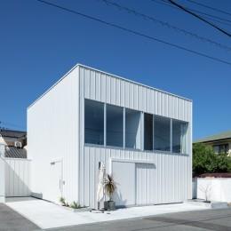 結崎の住宅 / House in Yuzaki (外観(東側より見る))