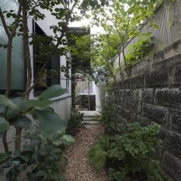 アレルギー反応を持つ子供が住むための和モダン住宅/美しい空気の家 (坪庭)