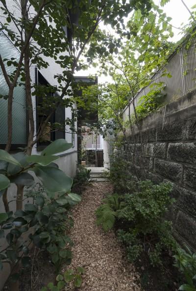 坪庭 (アレルギー反応を持つ子供が住むための和モダン住宅/美しい空気の家)