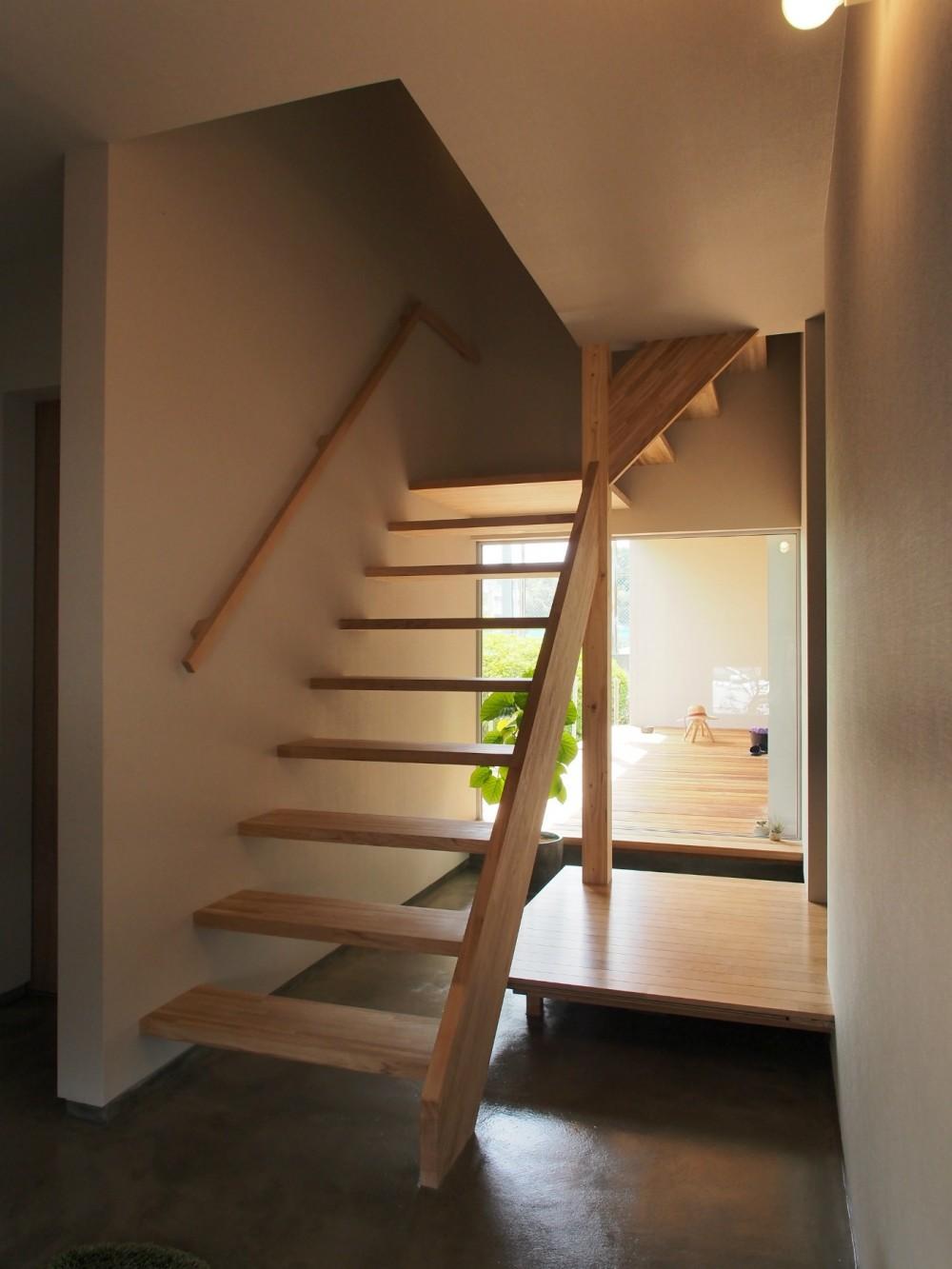 橿原の住宅 (玄関 / ホール)