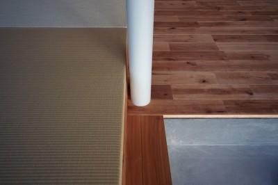 LDK / 畳 (橋本の住宅 / 土間と縁側)