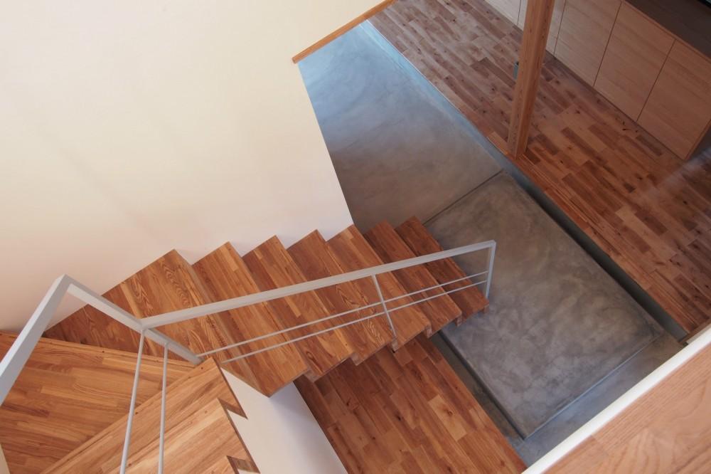 橋本の住宅 / 土間と縁側 (階段 / 土間)