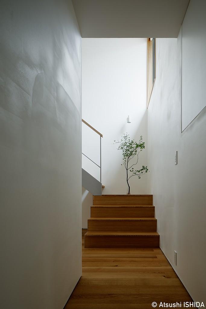 周囲に閉じて内部に開く傾斜地の家 (玄関)