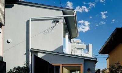 外観|光を奥まで導き視線が抜ける旗竿敷地の家
