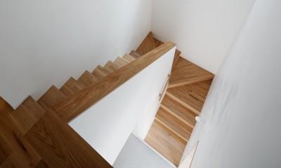 都心の住宅密集地にたつ二世帯住宅 (階段)