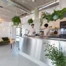 無機質な空間に映えるグリーン。モルタル床の家の写真 ご夫婦お気に入りのキッチン