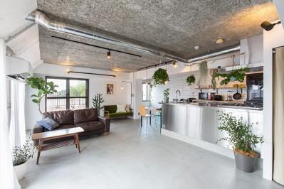 無機質な空間に映えるグリーン。モルタル床の家 (リビングダイニング)