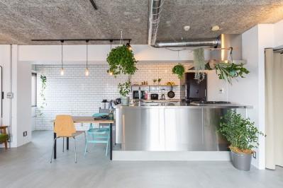 無機質な空間に映えるグリーン。モルタル床の家 (キッチン)