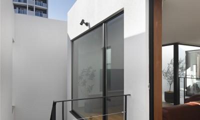 Double Wall House / ダブルウォールハウス (中庭)